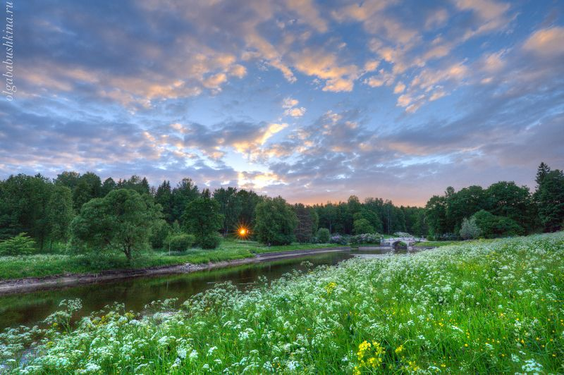 парк, павловск, лето, закат Последний луч солнцаphoto preview