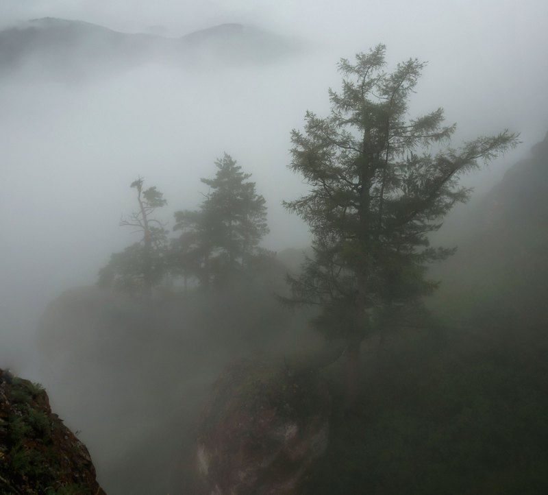 туман. торгашинский хребет. В густом тумане.photo preview