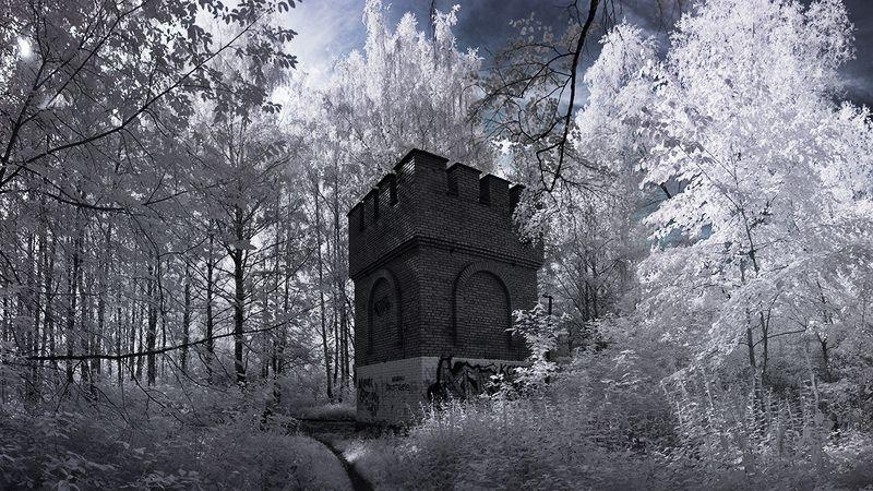 инфракрасный, ик, ir, infrared, пейзаж В соседнем измеренииphoto preview