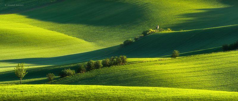 пейзаж, моравия, весна all green...photo preview
