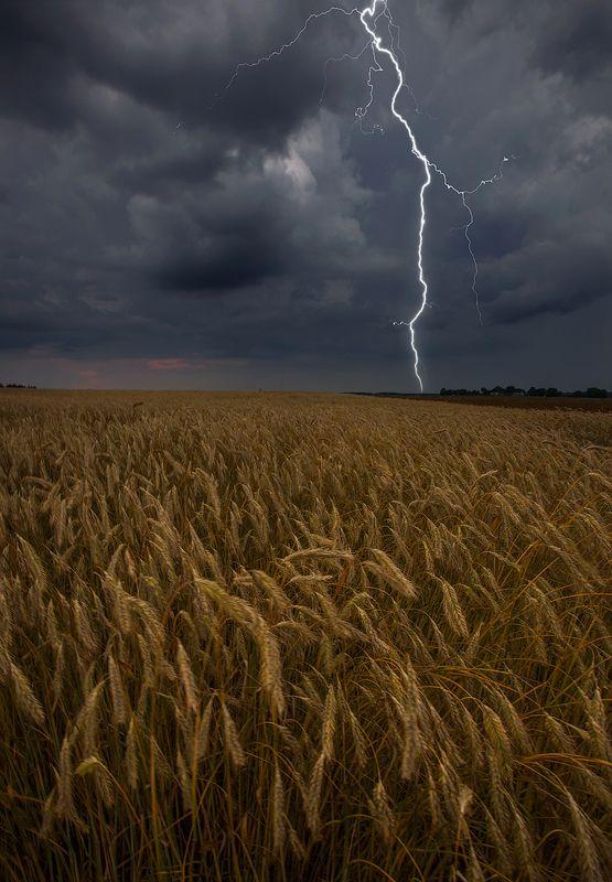 гроза, молния, лето Разрывая тишинуphoto preview