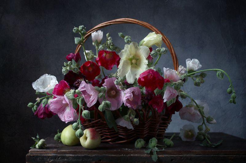 натюрморт, цветы, мальвы, корзина, лето, нектарины Корзина с мальвамиphoto preview