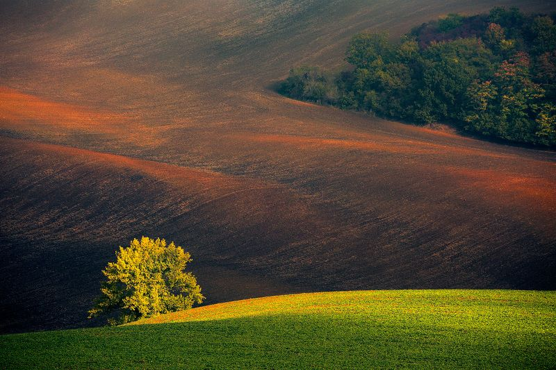 landscape,canon,light,autumn,moravia On the Hill Lights Begin to Appear.photo preview