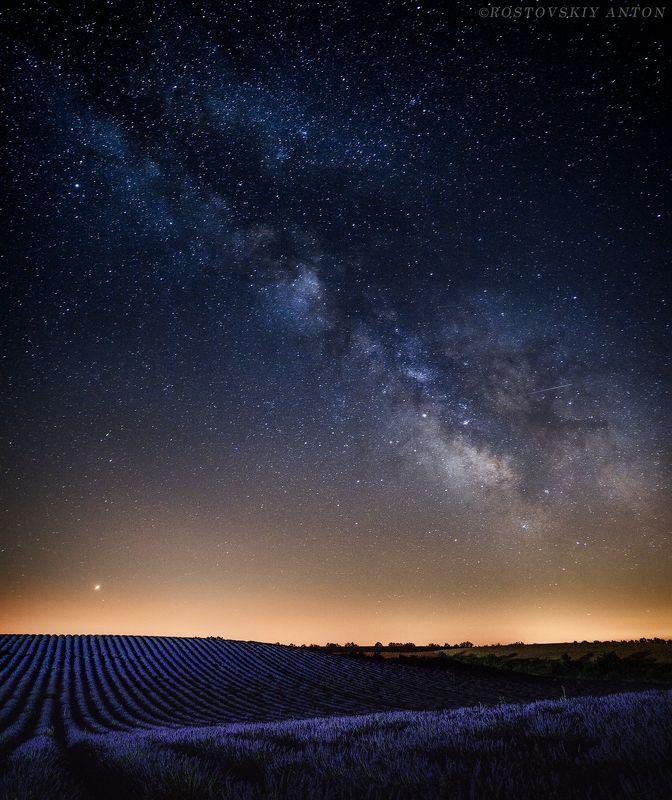Прованс, Франция, фототур, звёзды, млечный путь, ночь, поле, лаванда, лаванди, triplaunch, Provence, Lavender, Лавандовая ночьphoto preview