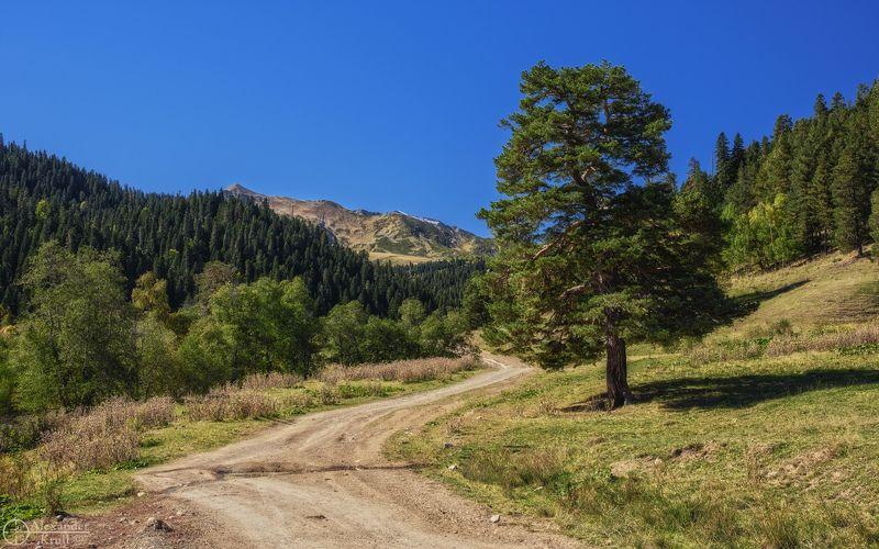 Погожим днем в горах...photo preview
