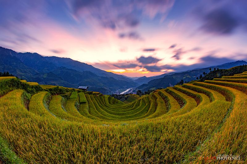 quanphoto, landscape, long_exposure, sunset, sundown, mountains, rice, terraces, mountains, valley, farmland, agriculture, rural, vietnam Rice Terraces Sunset in Vietnamphoto preview