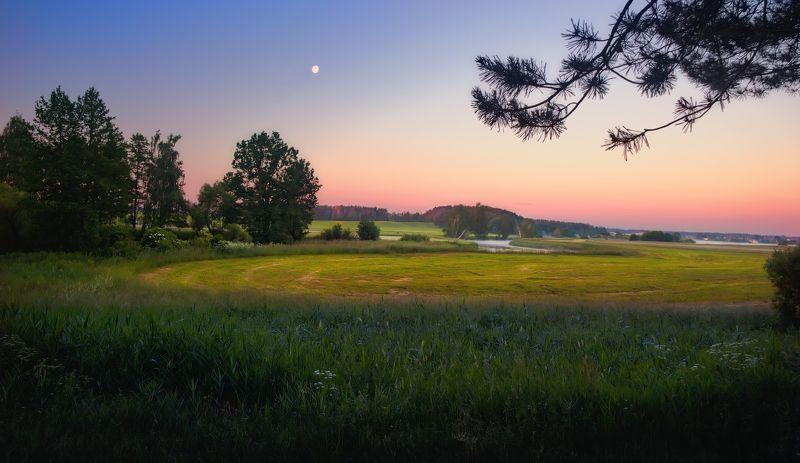 рассвет, утро, поле, луна, дымка, Перед рассветомphoto preview