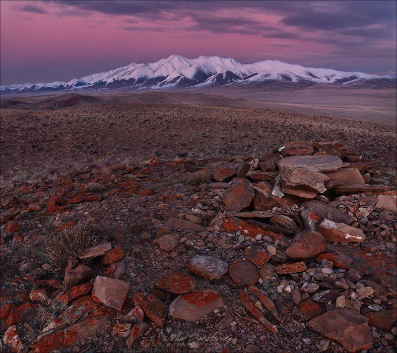 Алтай, горы, осень, урочище Кокоря, Сайлюгем, Сайлюгемский хребет,  Вечерний Сайлюгемphoto preview