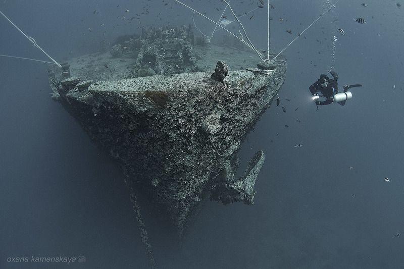 wreck thistlegorm underwater ship bow SS Thistlegorm #4. Нос корабля.photo preview