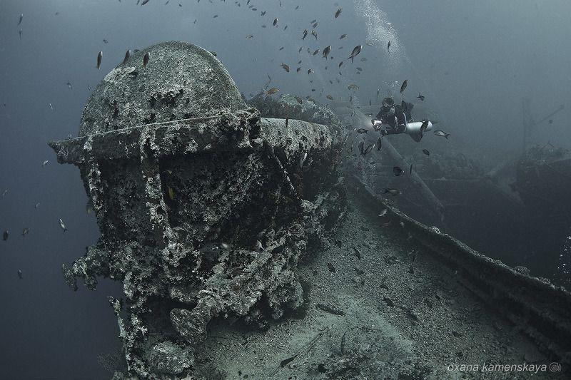 wreck thistlegorm underwater ship  SS Thistlegorm #5. Железнодорожный вагон.photo preview