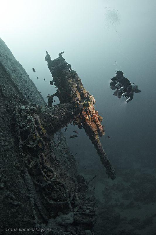 Thistlegorm wreck diving underwater SS Thistlegorm #7. Пушка.photo preview