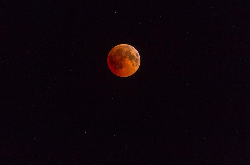 В тени Земнойphoto preview