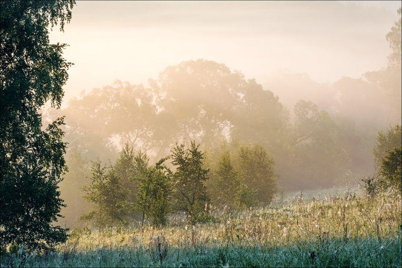 В туманах июняphoto preview