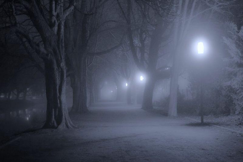 Туманная ночьphoto preview