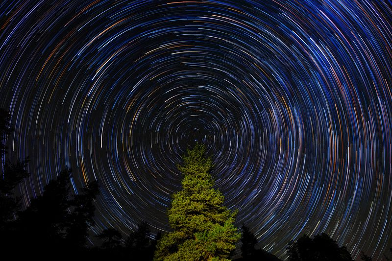 night, astrophotography, star trails Хвойные сныphoto preview