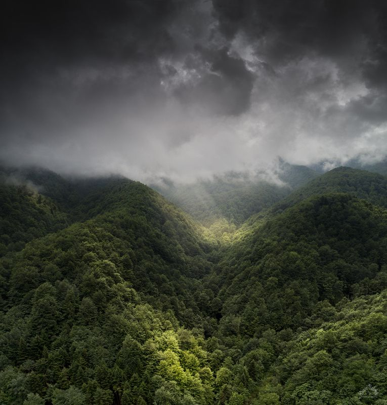 #rays #rainy #mountains #shadows #storm #trees #green Лучи через дождя..photo preview