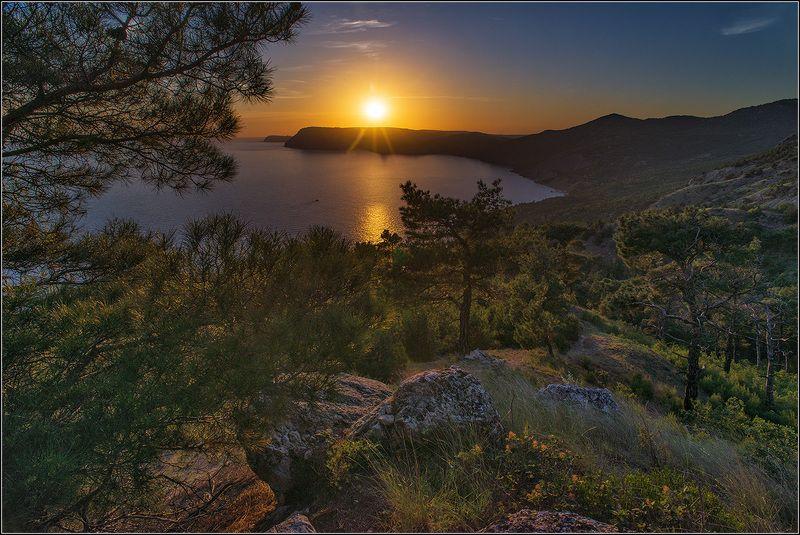 крым, инжир, море, солнце, луна, ночь, вечер, утро, горы *  *  *photo preview
