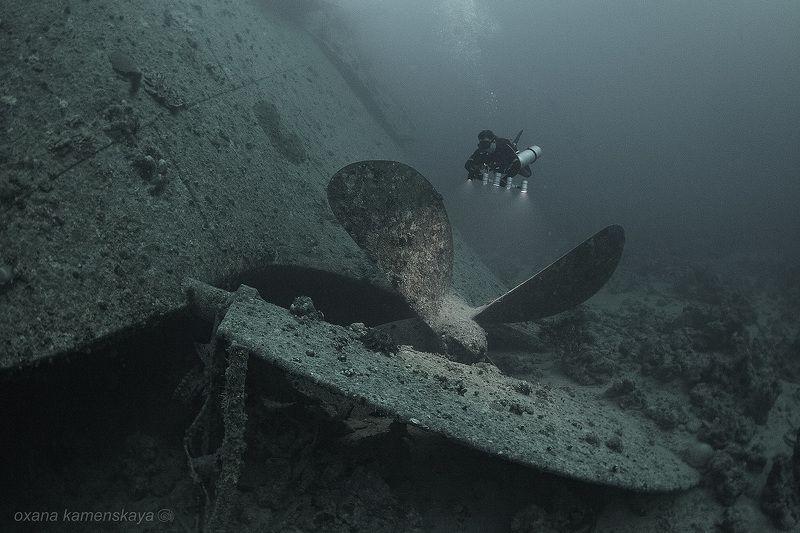 Thistlegorm wreck diving underwater SS Thistlegorm #8. Винт.photo preview