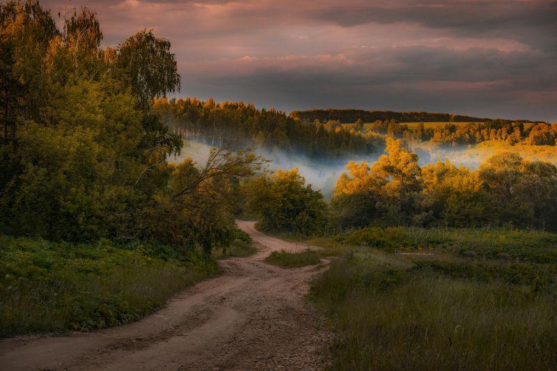 закат, туман, лес, дорога Волшебный вечерphoto preview