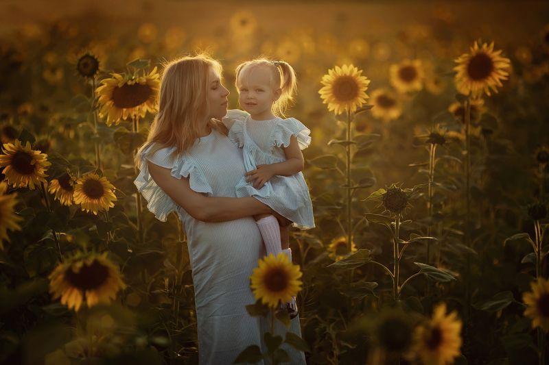 подсолнухи, закат, мама, ребенок Вечер в полеphoto preview