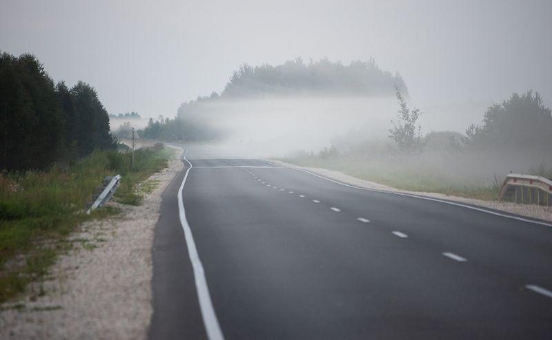 мещёра, дорога, туман, деревья, лес, поля, рязанская область Pro придорожные туманы …photo preview