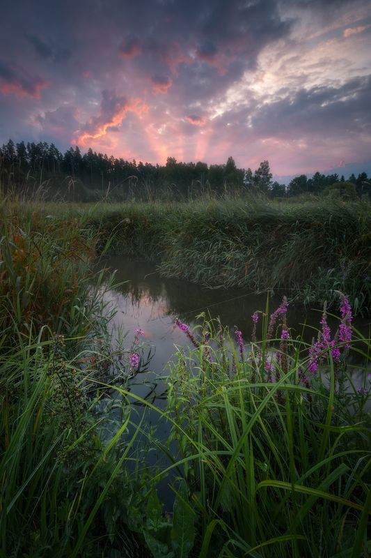 river Kinfisher\'s kingdom...photo preview