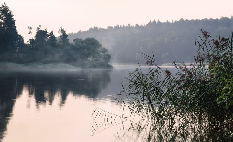 лето, рассвет, река, туман, Летние туманыphoto preview
