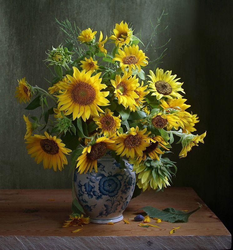 натюрморт, цветы, марина филатова, лето, подсолнухи Отблески летаphoto preview