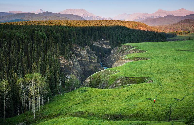 sheep river meadows canyon bighorn sanctuary ПРОБЕЖАТЬСЯ ПО РОСЕphoto preview