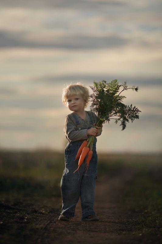 ребенок, поле,закат,деревня Фермерphoto preview