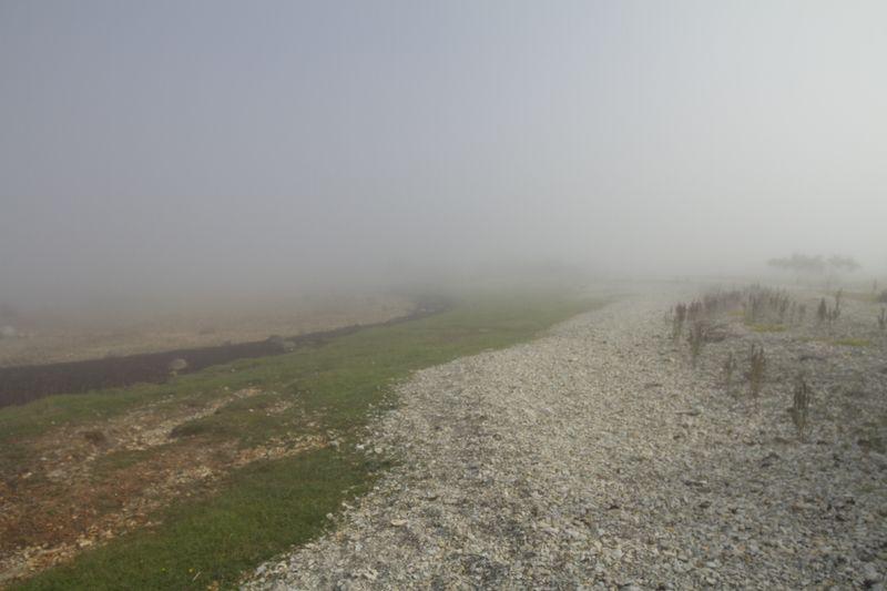 Туманное утро на острове Осмусаарphoto preview