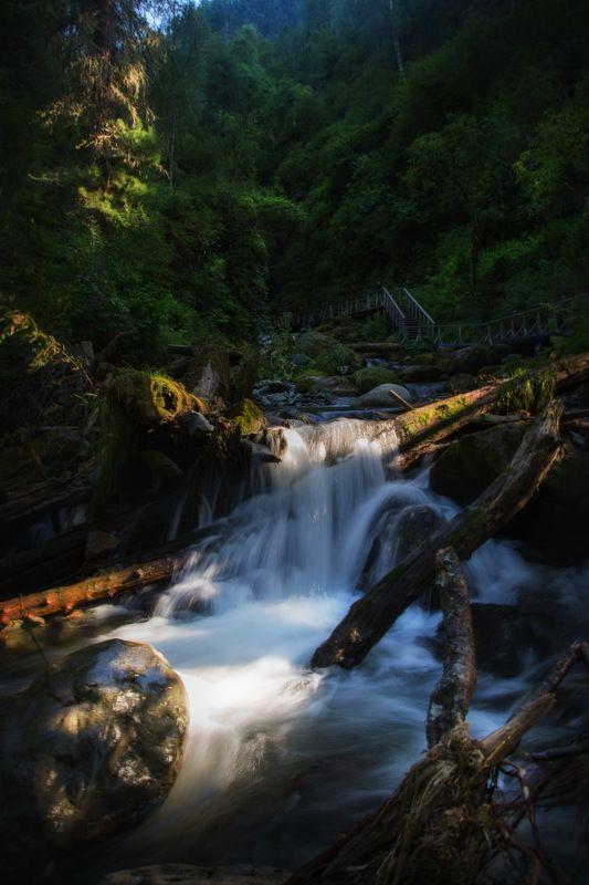 телецкое озеро, алтай, путешествие, река бия, природа, пейзаж Фотопрогулка по Телецкому озеру. Алтайphoto preview