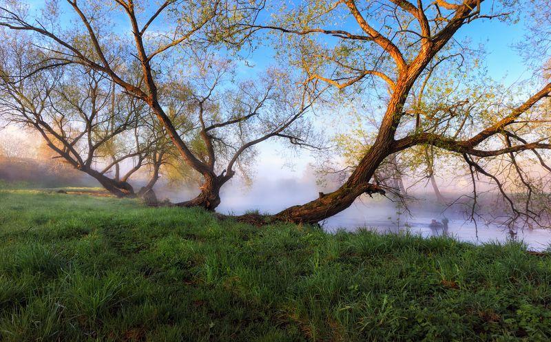 утро, река, весна, дымка, Про веснуphoto preview
