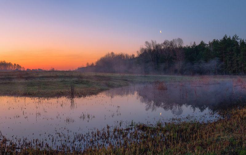 рассвет, луна, лес, озеро, луг, весна, утро, Апрель, панорама, morning, sunrise, Moon, spring, April, small lake, landscape, panorama \