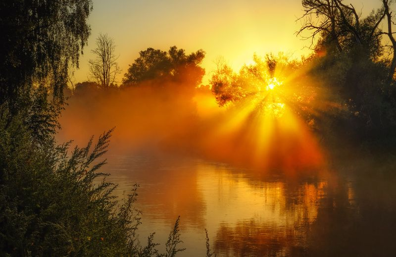 утро, рассвет, туман, природа, август, лето Доброе августовское утро!photo preview