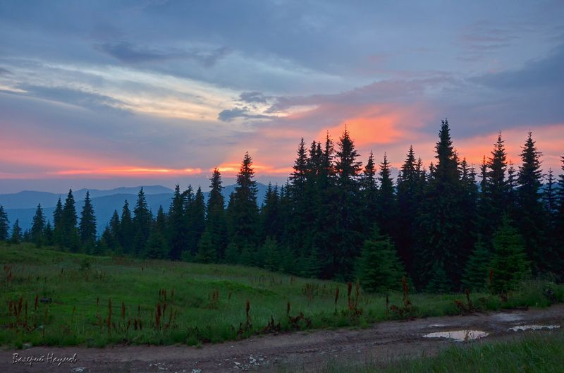 вечір, полонина, карпати, літо Надвечір\'еphoto preview