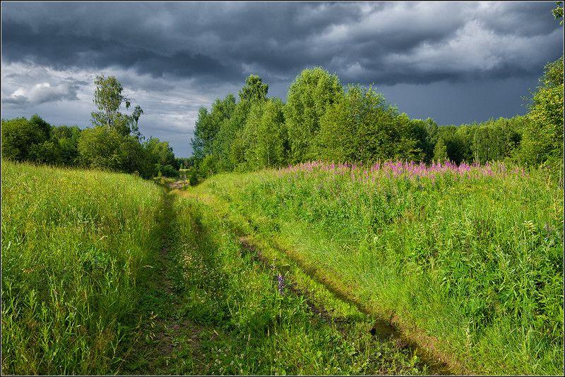 нижегородская область, лето, лес, река, поле *  *  *photo preview