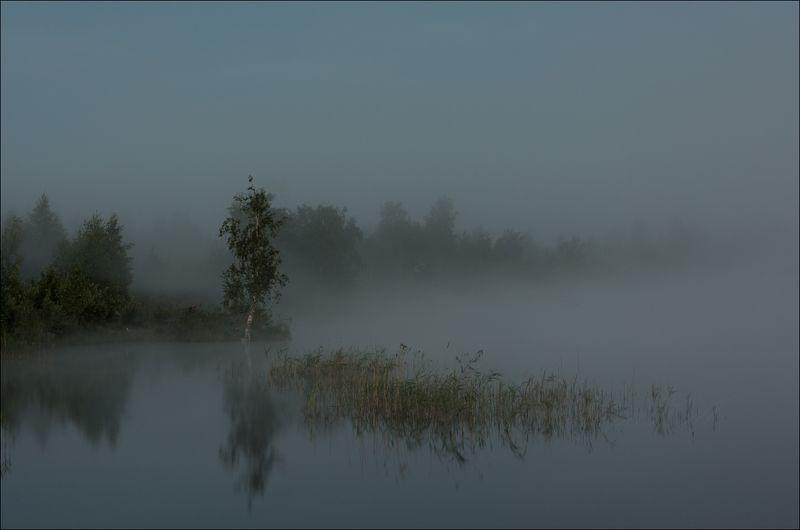 Летнее утро на торфяникахphoto preview