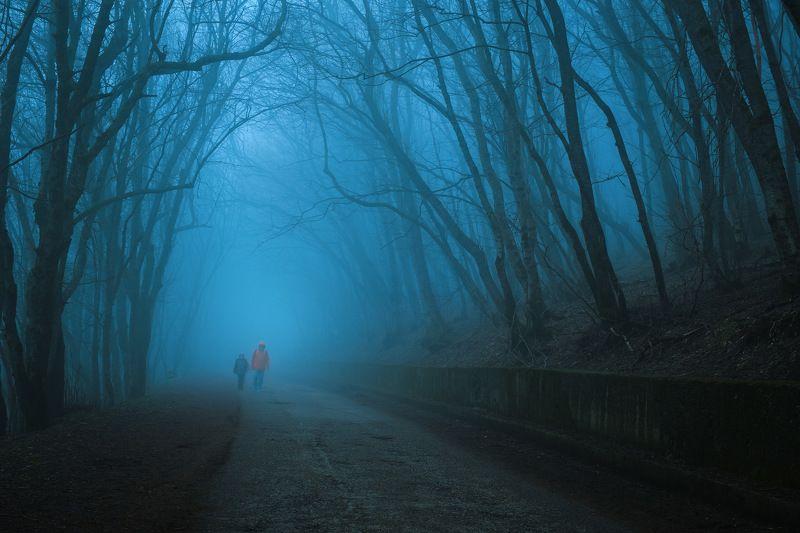 россия, ставропольский край, кавказ, пятигорск, кмв, машук, пейзаж, природа, лес, вечер, закат, туман, весна, сумерки \