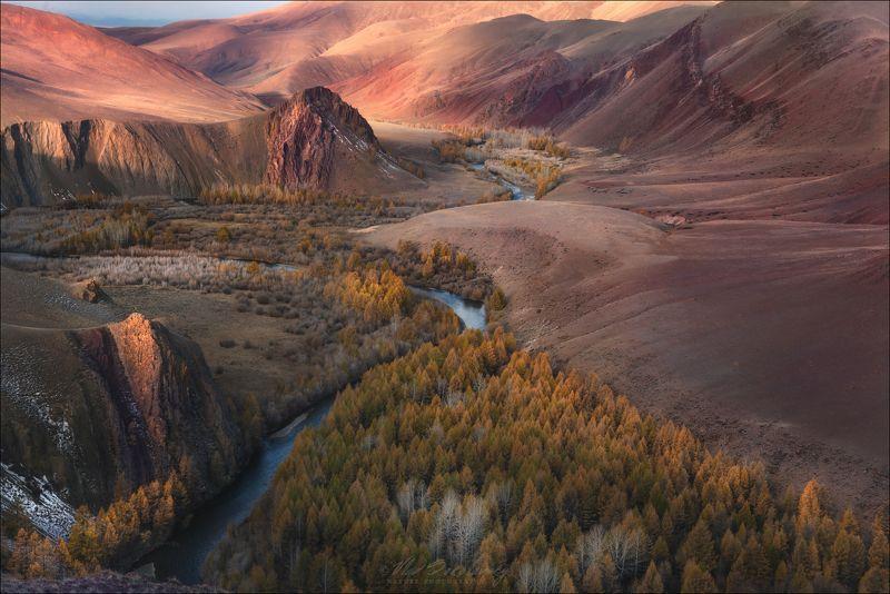 алтай, горный алтай, осень, марс, кызыл-шин, урочище, кокоря, кош-агач, сайлюгем, сайлюгемский хребет Красная Планетаphoto preview