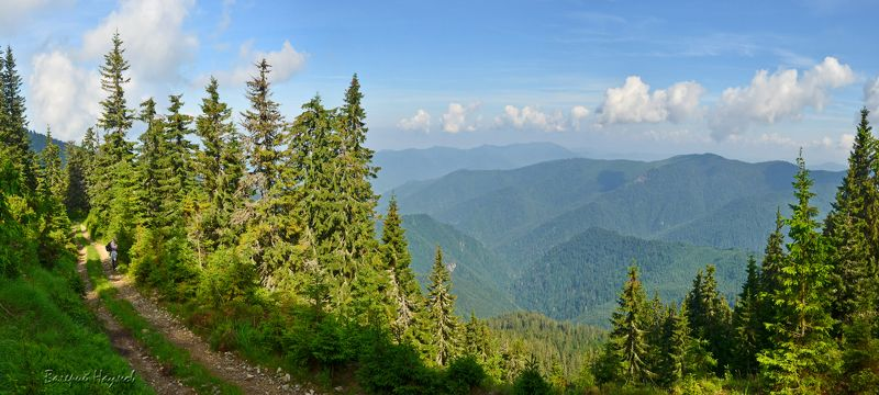 карпаты, горы, мармаросский массив Дорога в горахphoto preview