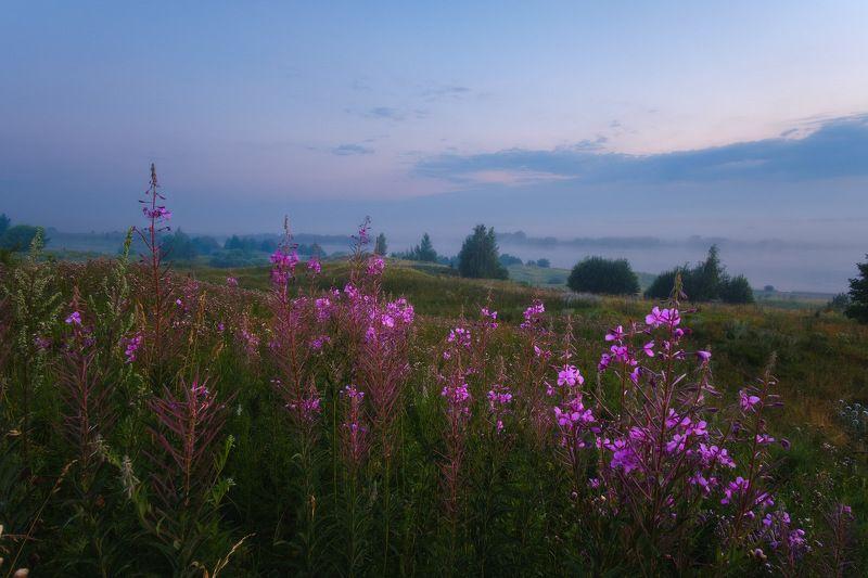 россия, рязанская область, константиново, ока, пейзаж, природа, лето, туман, река, восход солнца, рассвет, солнценце На Родине поэтаphoto preview