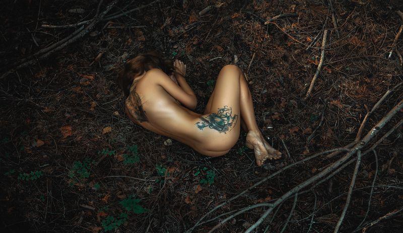 девушка,жанр,портрет,фотография,модель,арт,portrait,photography, middle,nature,soul,свет,girl,canon 85 mm, woman,monochome,ню,гламур Forest Fairyphoto preview