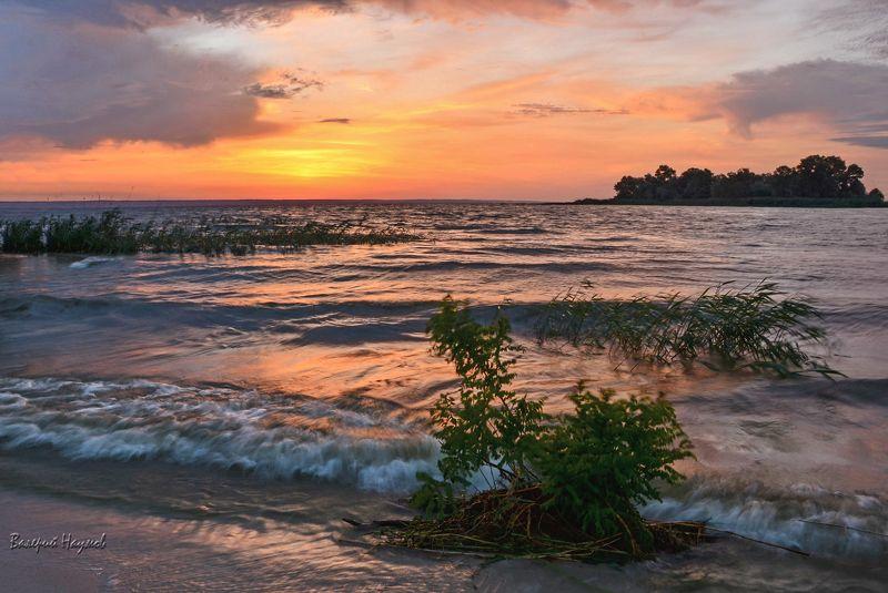 лето, утро, рассвет, ветер, волна, отражения Предрассветнаяphoto preview