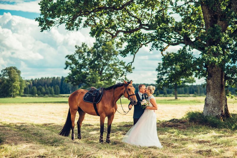 #horse #weddings #love Weddings in naturephoto preview
