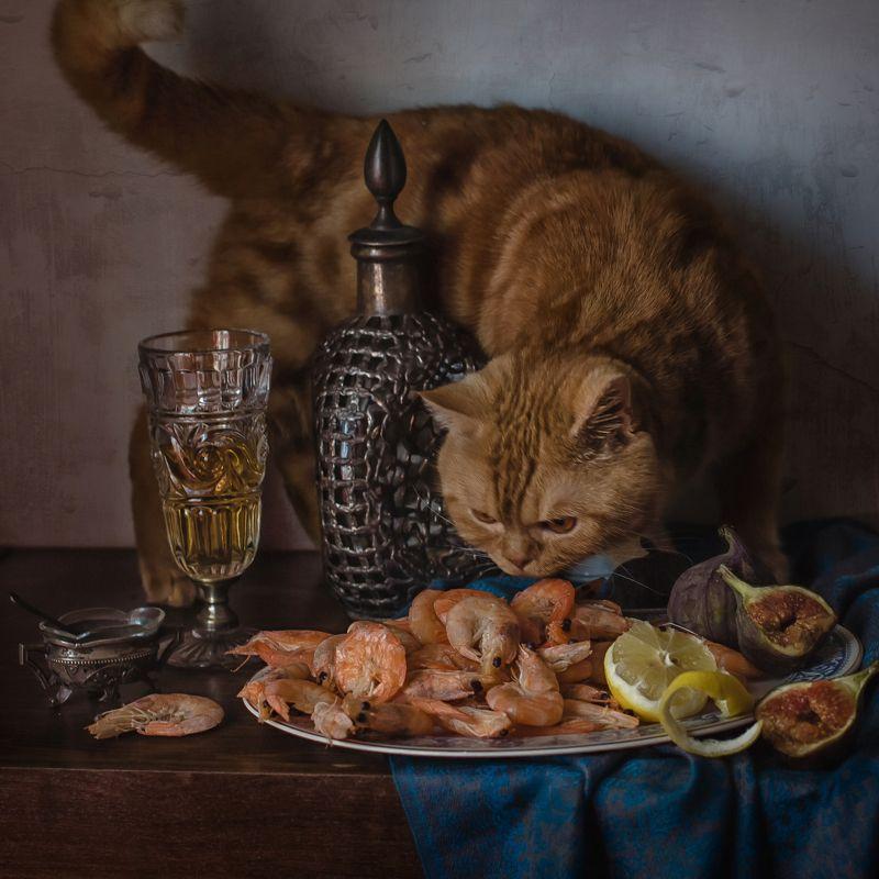 животные, кошки, кот, натюрморт, графин, бокал, креветки, инжир, лимон Гурманphoto preview