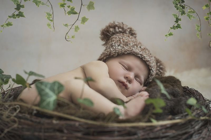 newborn, boy, bear, sleep Szymonphoto preview
