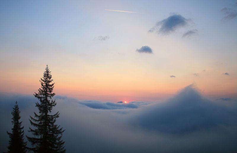 Утро,восход, Карпаты Из плена тумановphoto preview