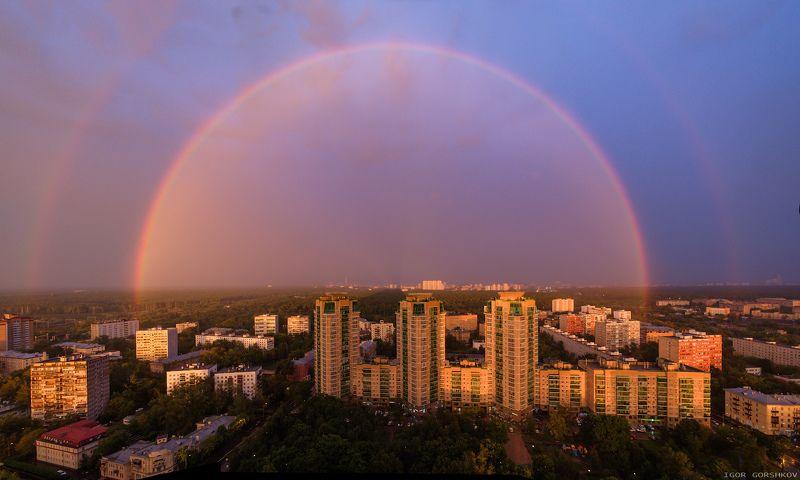москва,радуга,пейзаж,город,гроза,туча,ливень,дождь,закат,лосиный остров,лес,парк,лето,вечер Радуга над Москвойphoto preview