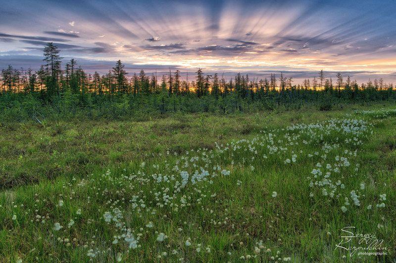 якутия, индигирка Земля и небоphoto preview